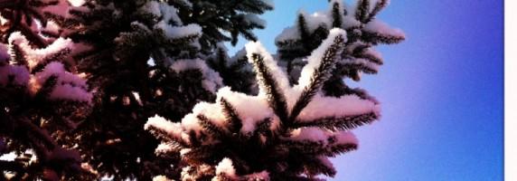 Turrones y Mazapanes- Cuento de Navidad